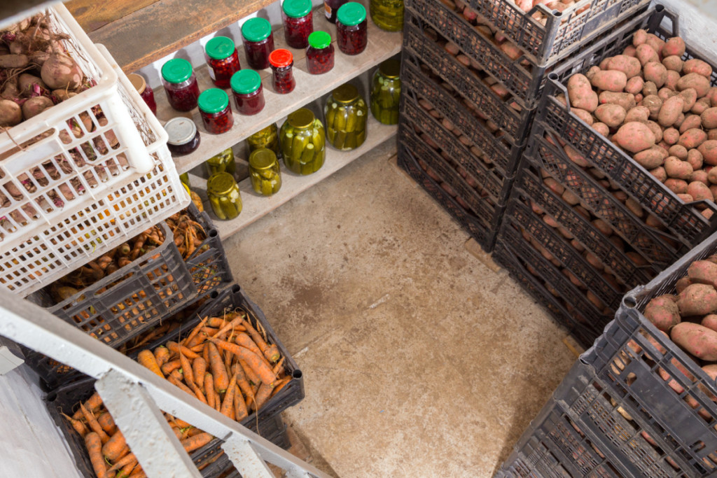 Fresh potatoes, carrots and canned vegetables in the cellar