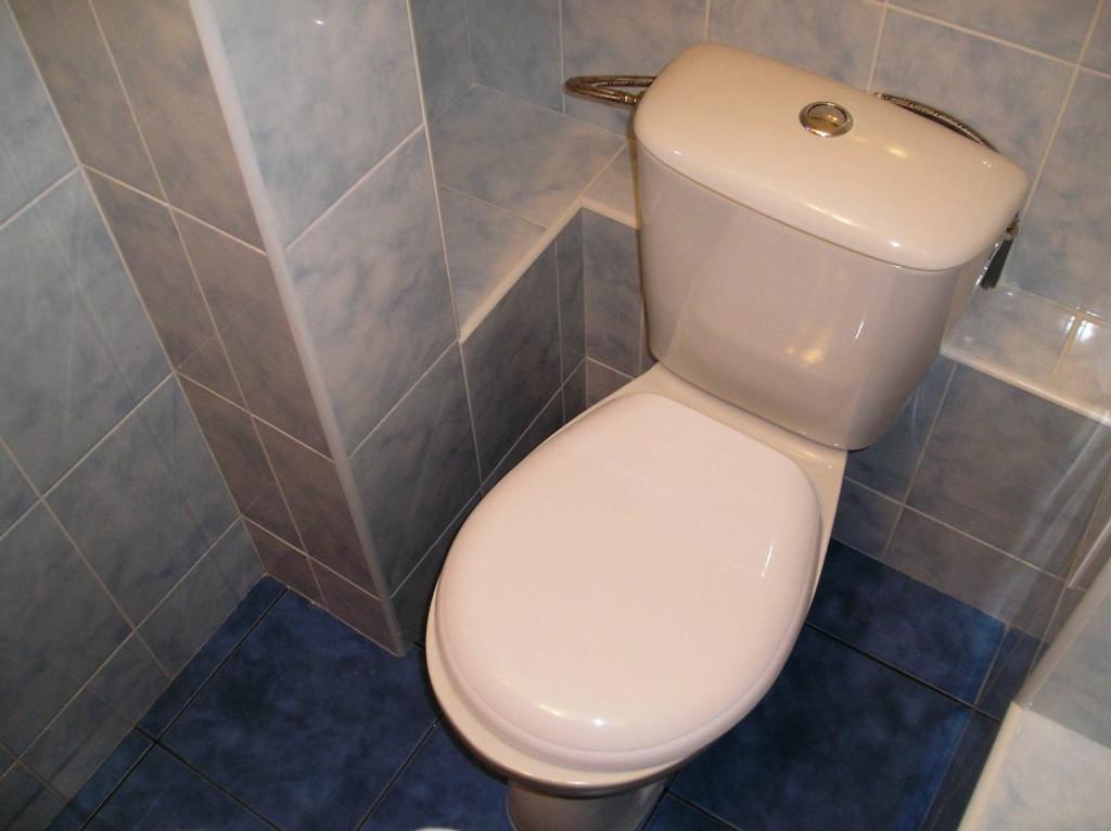 plitka-dlya-tualeta-21