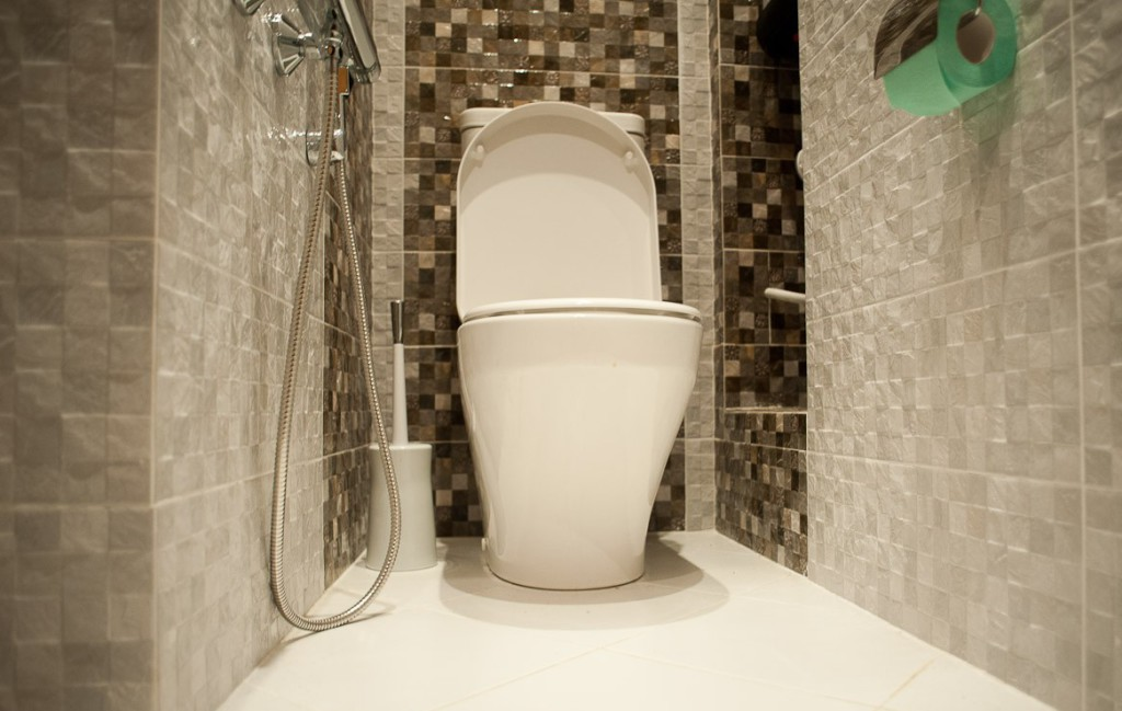 plitka-dlya-tualeta-39
