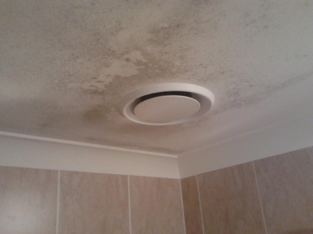 Как-убрать-плесень-в-ванной-на-потолке